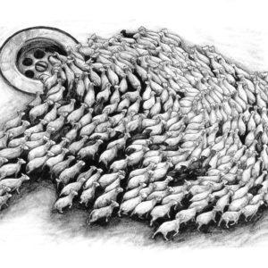 Levalet_sheeps_60x80_33ex_1000px